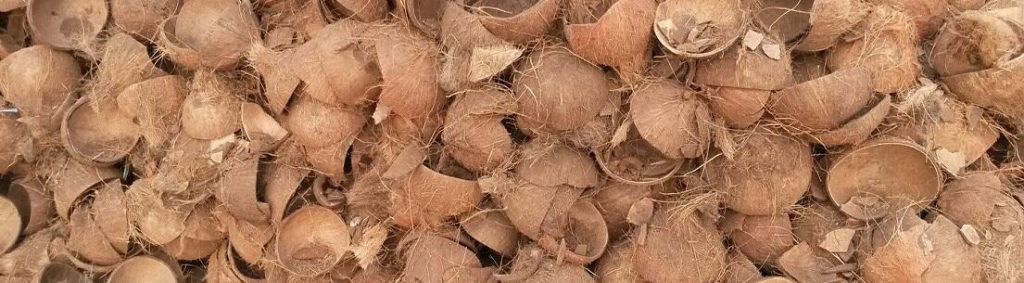 kokosbast