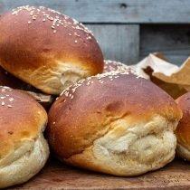brioche burger broodjes